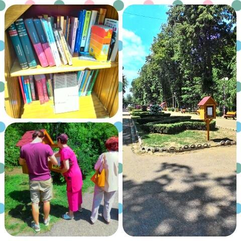 little-free-library-bacau